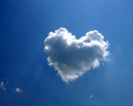 Лучшие и прекраснейшие вещи в мире нельзя увидеть, к ним нельзя даже прикоснуться. Их надо чувствовать сердцем.