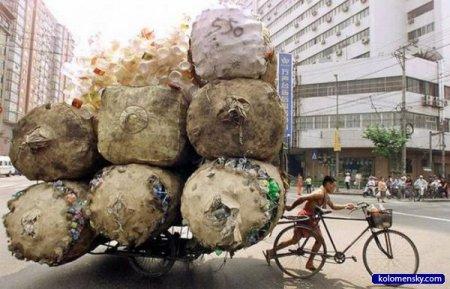 Экологически чистый транспорт